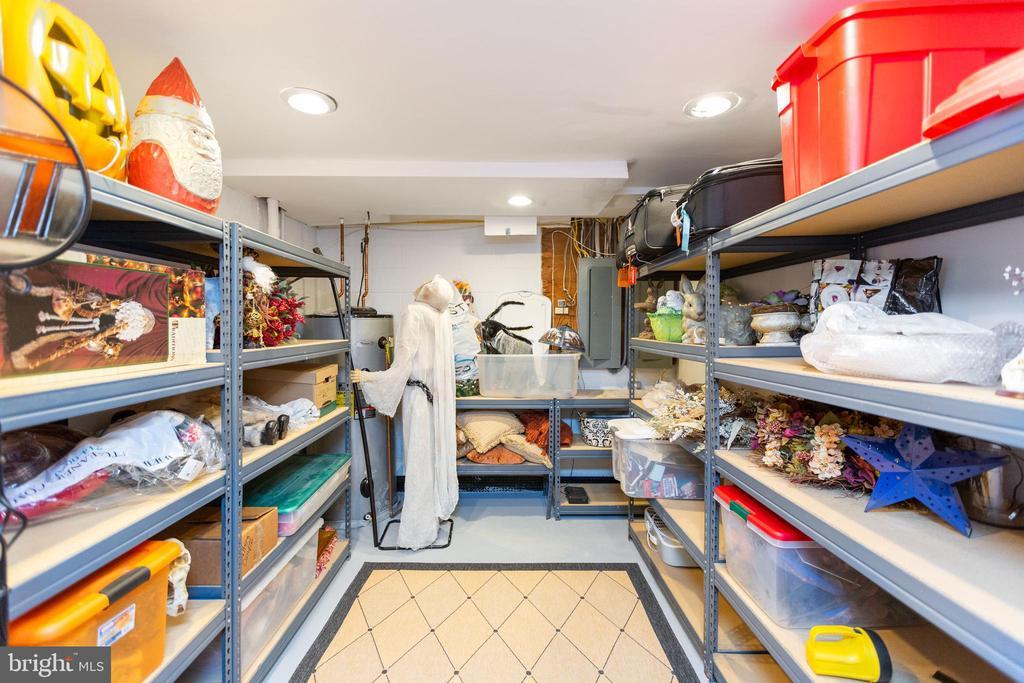 Lower level storage closet - 1020 MONROE ST, HERNDON