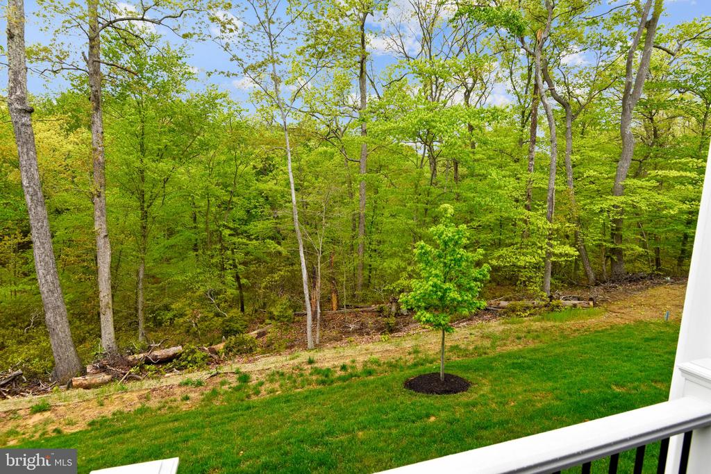 You can unwind w/ these views of nature, peaceful! - 17966 WOODS VIEW DR, DUMFRIES