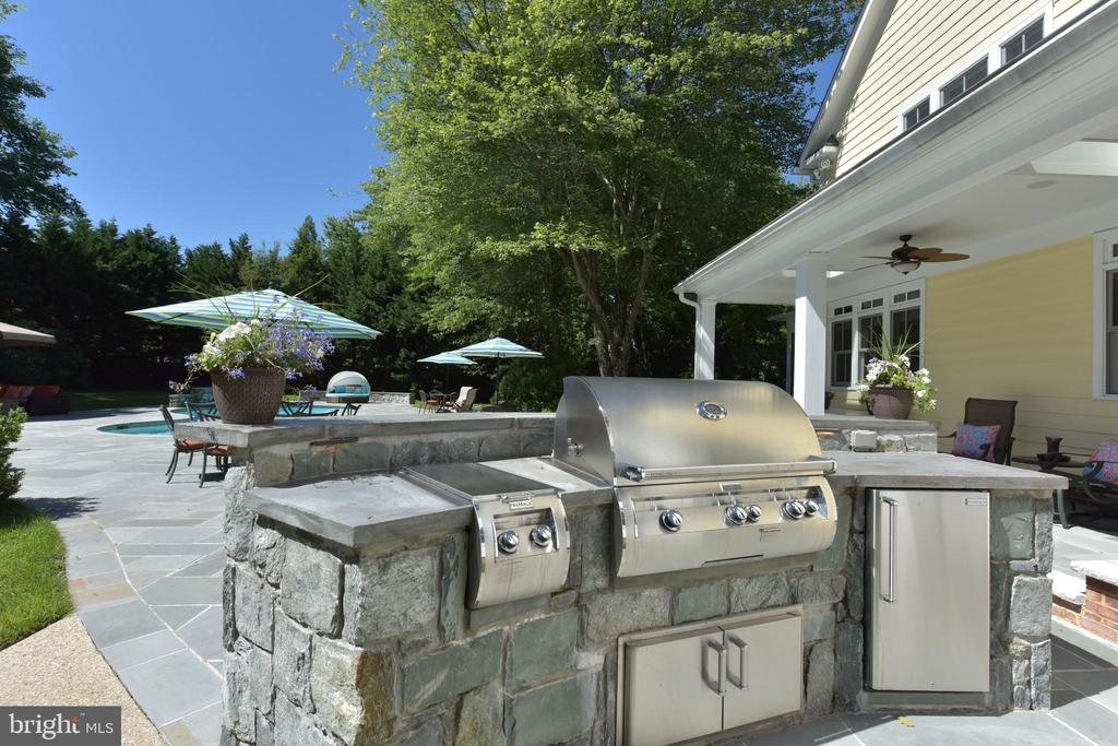 Outdoor kitchen perfect for entertaining - 5937 TELEGRAPH RD, ALEXANDRIA