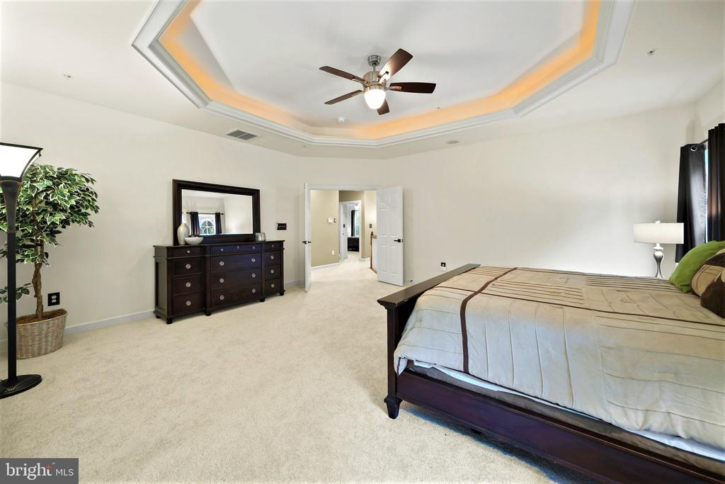 Beautiful Tray ceiling with lighting - 5442 EAGLE OWL CT, WALDORF