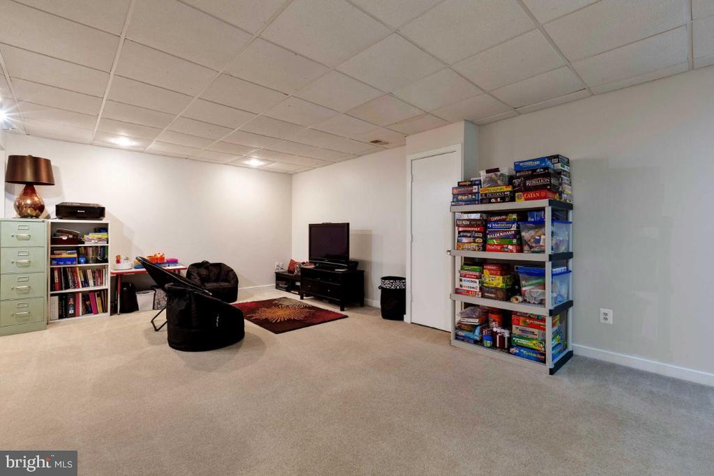 Recreation Room - 6505 CRAYFORD ST, BURKE