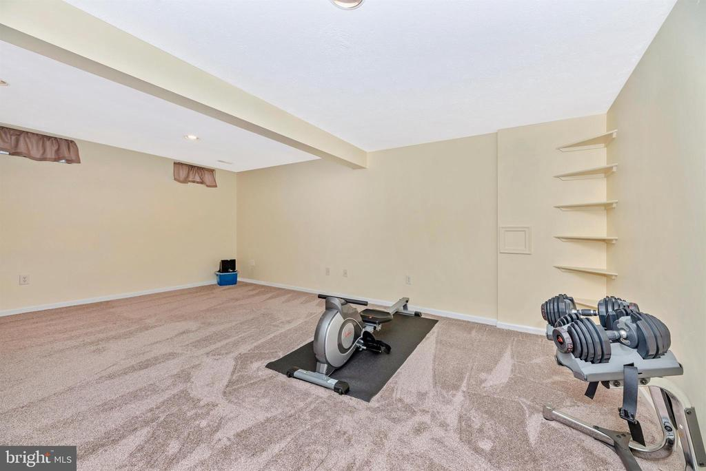 Lower Level Rec Room - 6204 ILLINOIS CT, NEW MARKET