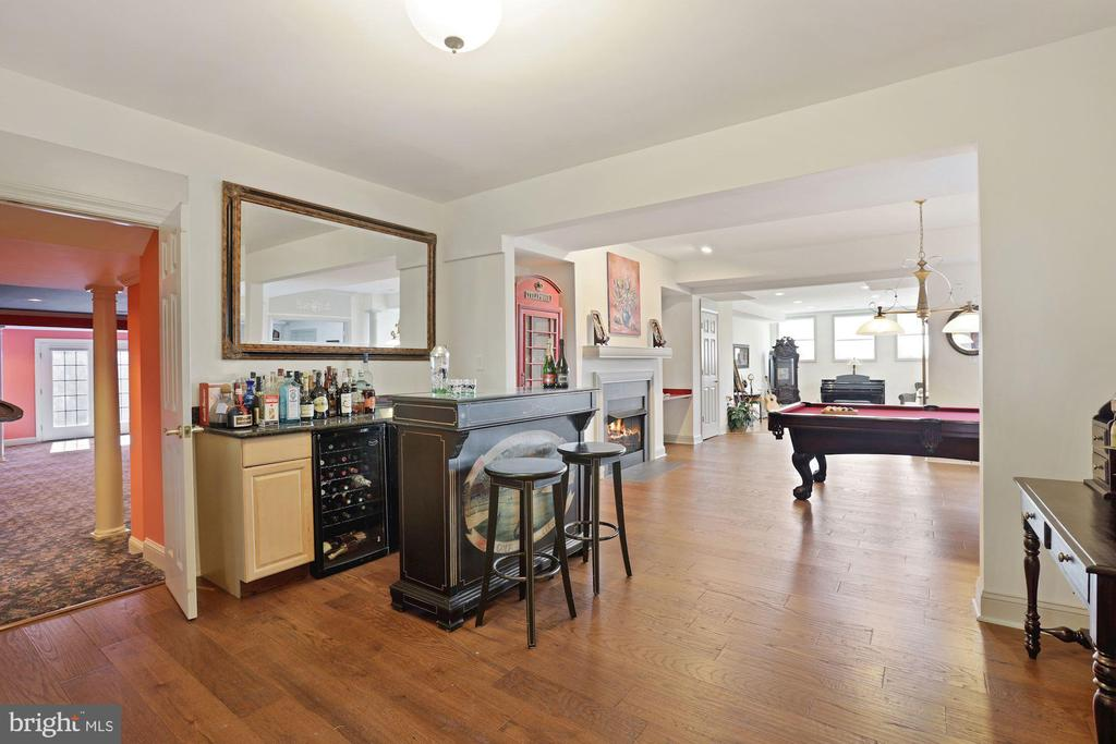 Let's have fun in the lower level! - 15929 BRIDLEPATH LN, PAEONIAN SPRINGS