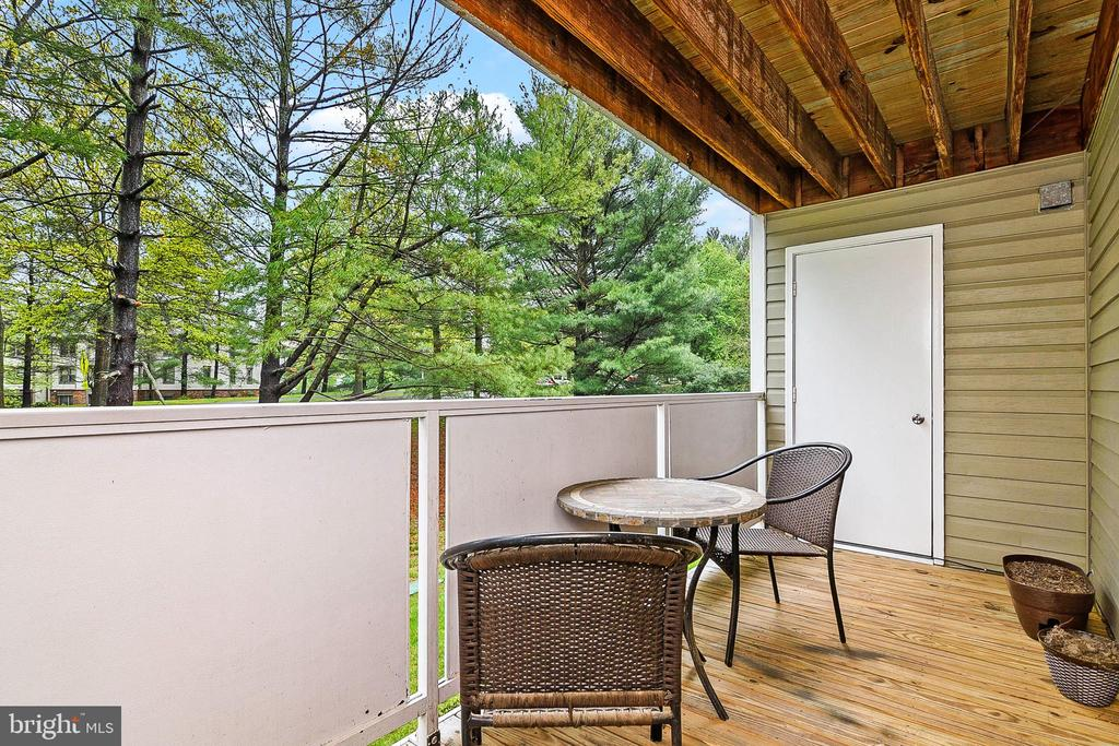 Private Balcony - 12209 PEACH CREST DR #903-F, GERMANTOWN