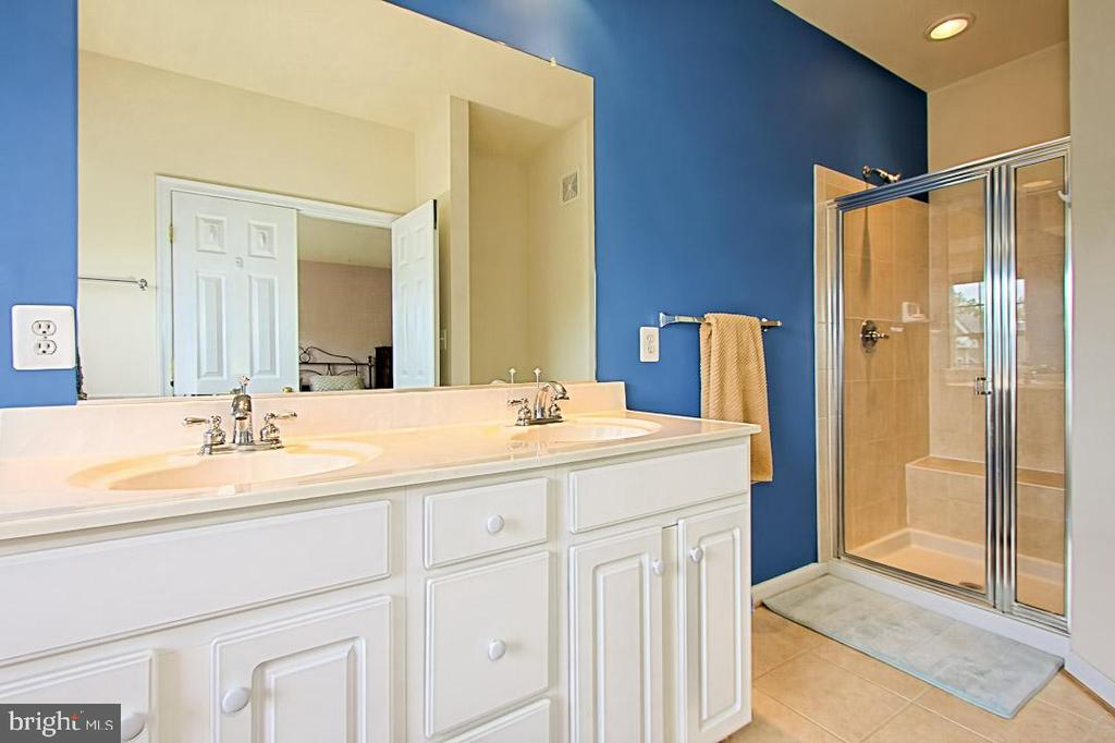 Separate shower - (wall since painted neutral) - 6719 ASPEN TRACE CT, ANNANDALE