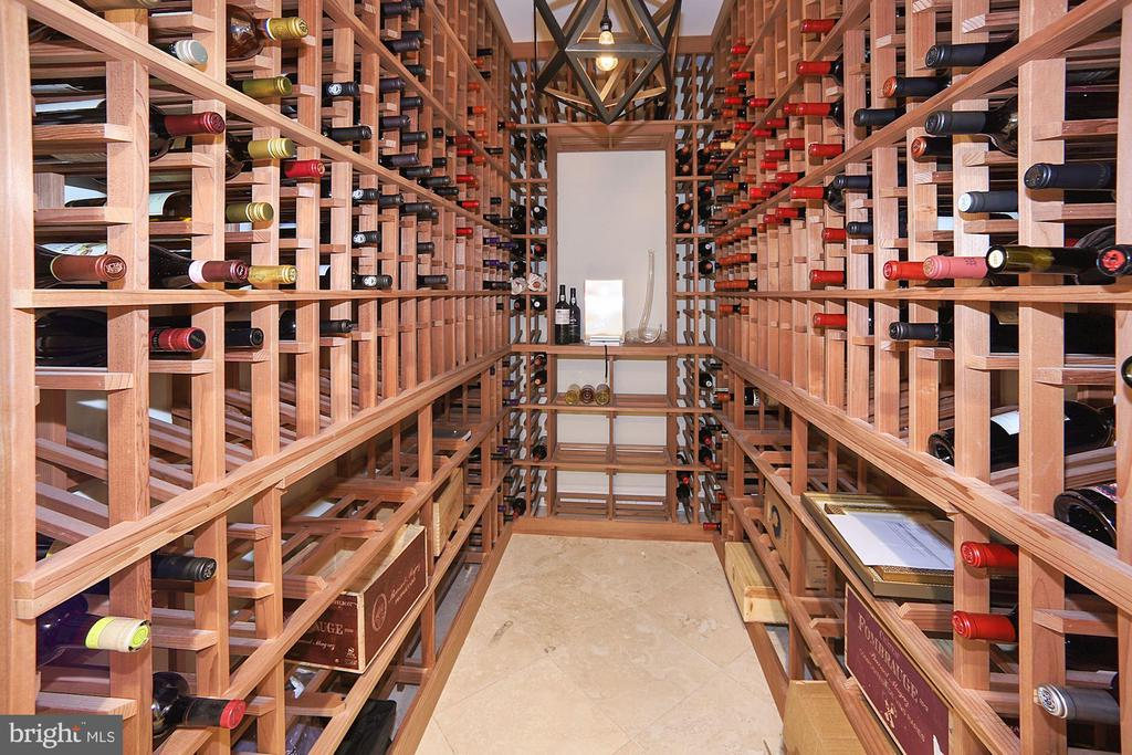 Lower Level Wine Cellar - 3001 CATHEDRAL AVE NW, WASHINGTON
