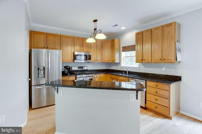 New Refrigerator and Dishwasher! - 619 SNOW GOOSE LN, ANNAPOLIS