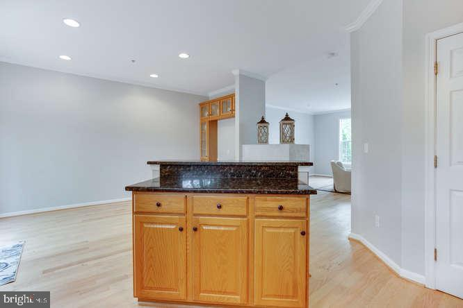 Island with Cabinet Space - 619 SNOW GOOSE LN, ANNAPOLIS