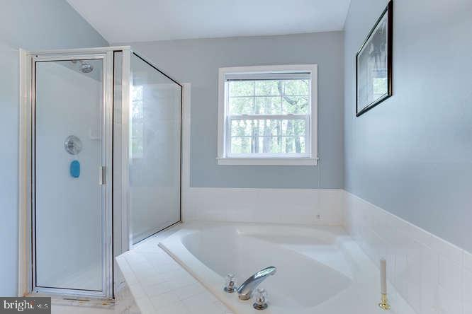 Separate Shower and tub - 619 SNOW GOOSE LN, ANNAPOLIS