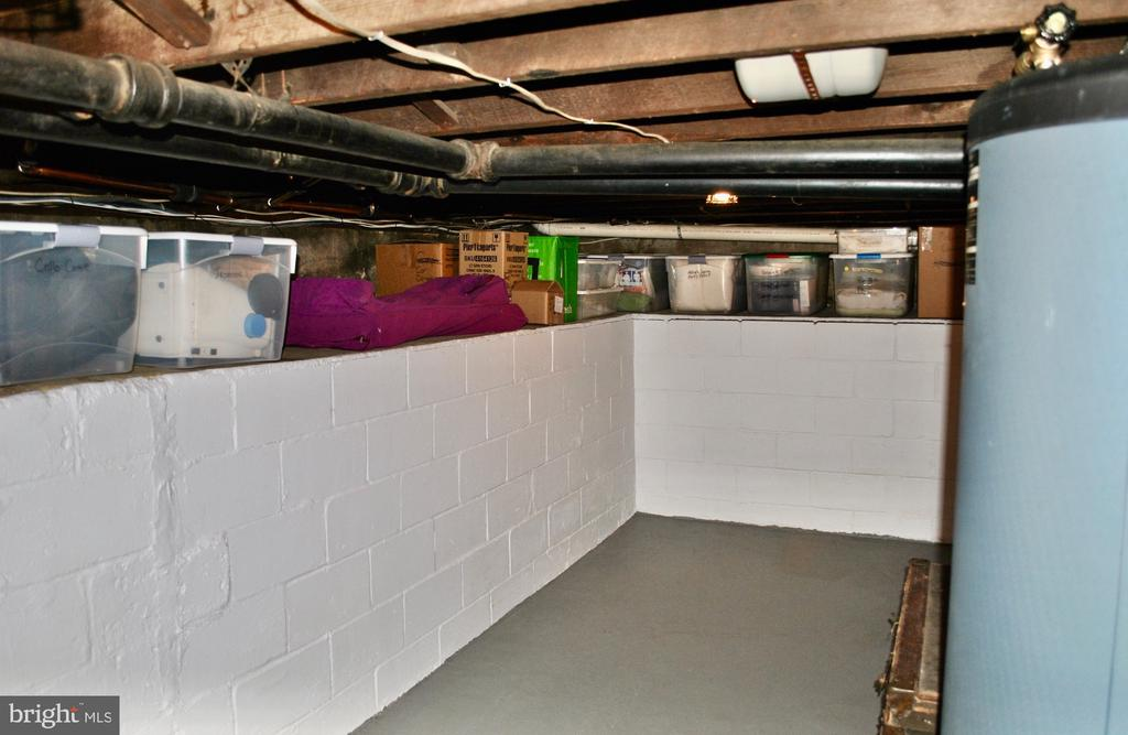Even basement is spotless/organized like a ship! - 434 STATE ST, ANNAPOLIS
