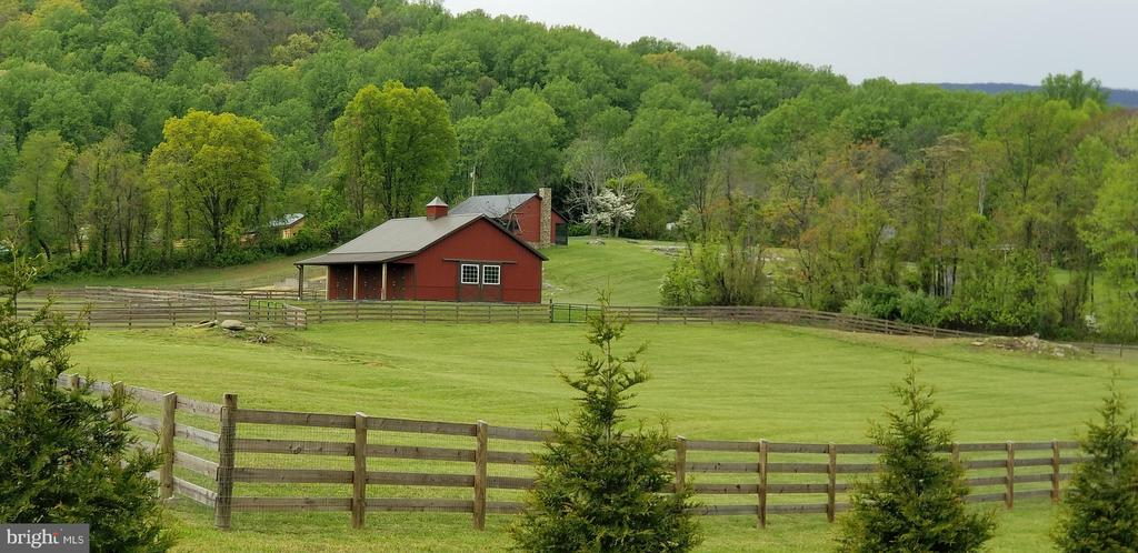 Pristine acreage with board and wire fencing. - 65 HICKORY LN, HUNTLY