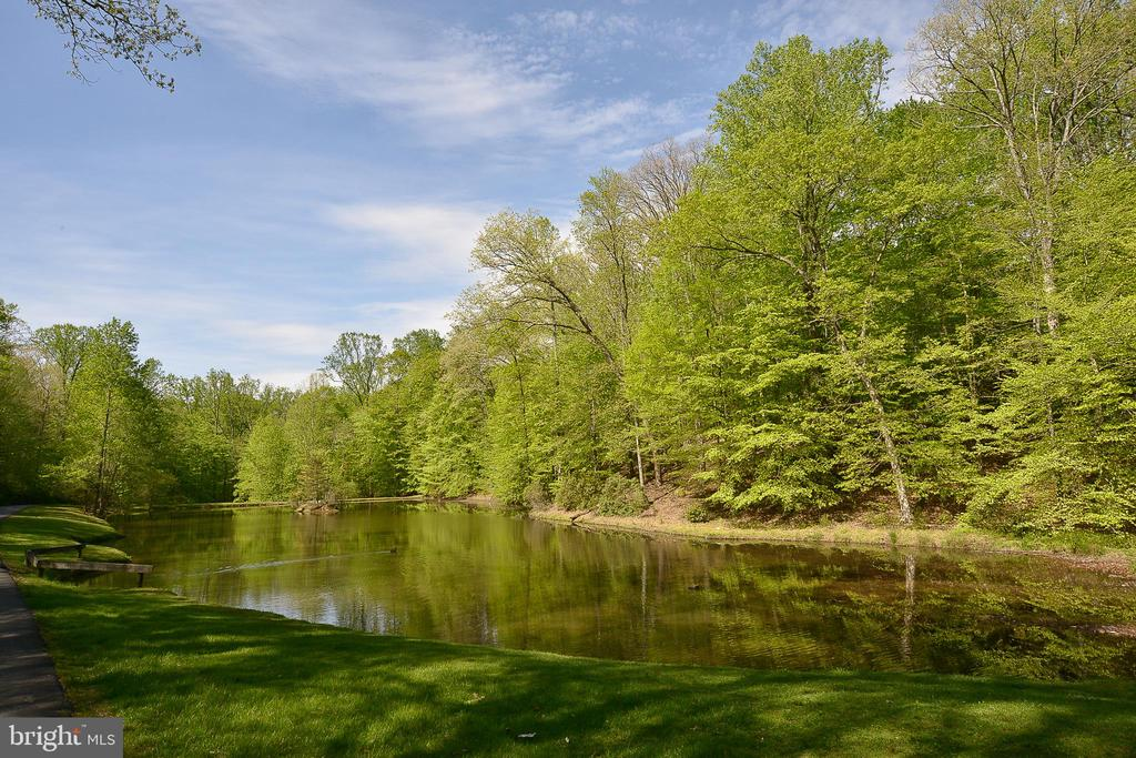 Picturesque Pond in The Community - 12970 WYCKLAND DR, CLIFTON