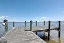 Bring your crab nets too - 18850 WICOMICO RIVER DR, COBB ISLAND