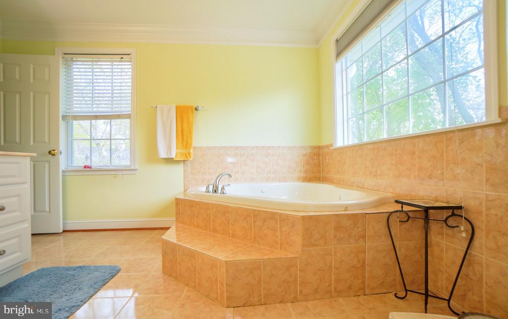 Master bathroom. - 7709 WEBER ST, ANNANDALE