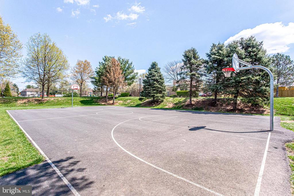 Walking Distance to Basketball Court - 10811 CRIPPEN VALE CT, RESTON