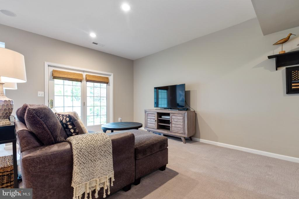 Large Rec Room - 43392 FRENCHMANS CREEK TER, ASHBURN