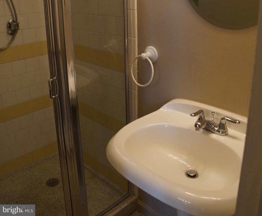 Master bath with walk-in shower - 501 SLATERS LN #823, ALEXANDRIA