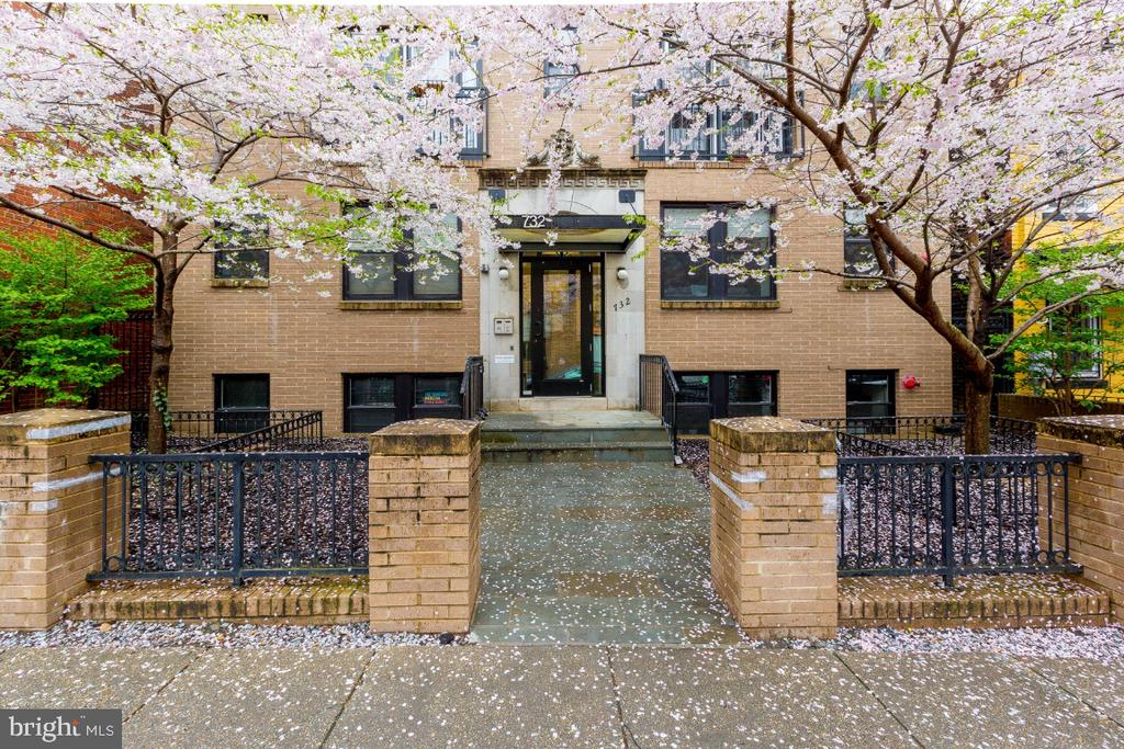 Beautiful entry - 732 LAMONT ST NW #303, WASHINGTON