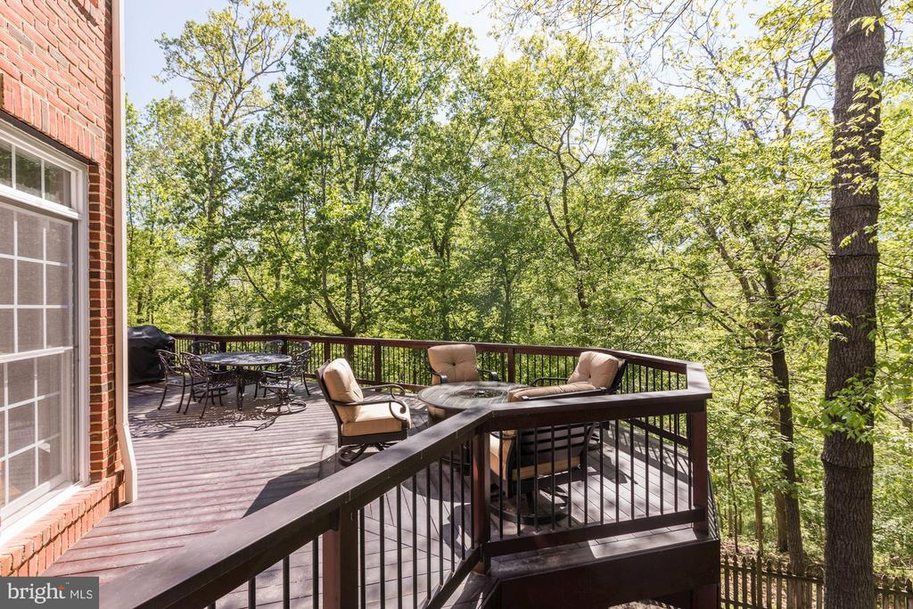 Deck off family room - 43285 OVERVIEW PL, LEESBURG