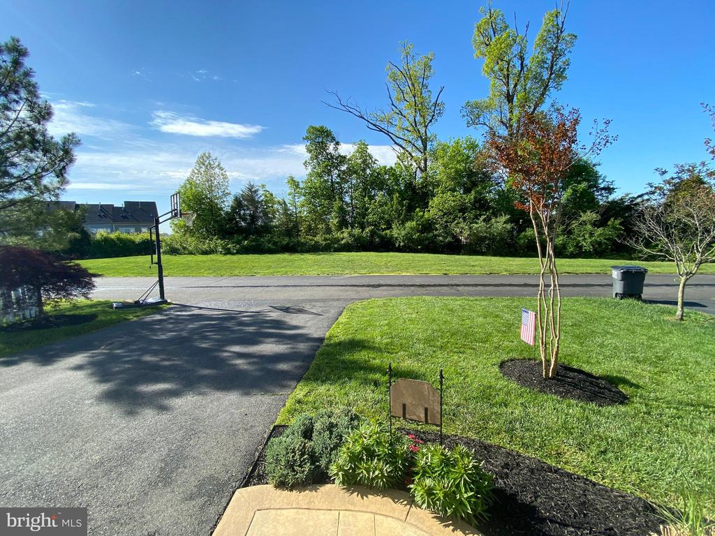 Tree-lined green space on dead-end alley! - 10597 POAGUES BATTERY DR, BRISTOW