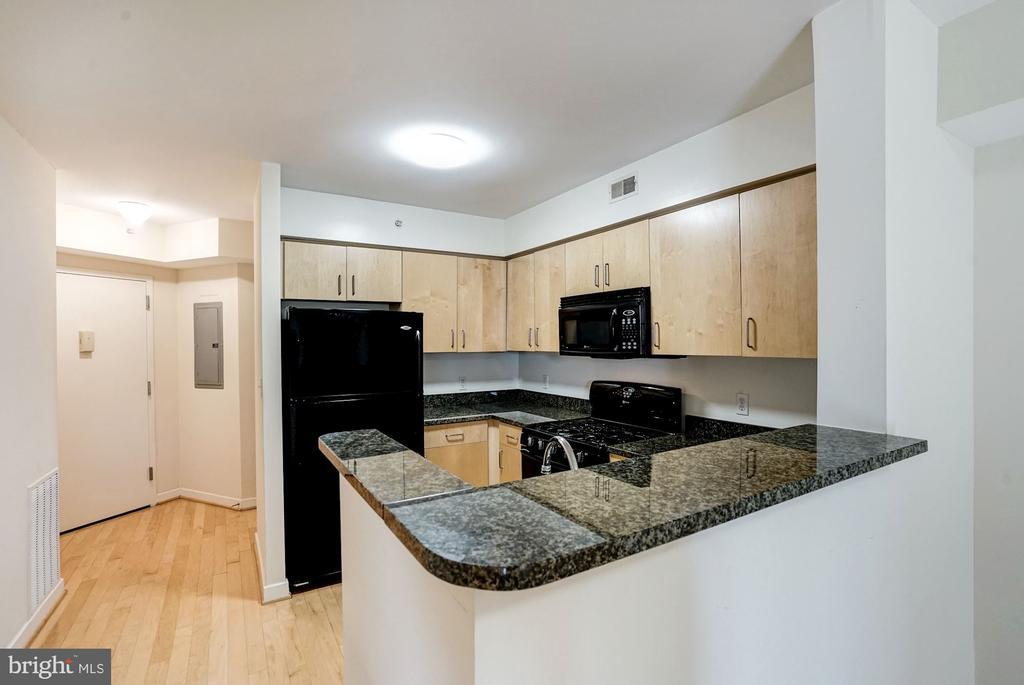 Kitchen 4 - 1000 NEW JERSEY AVE SE #413, WASHINGTON