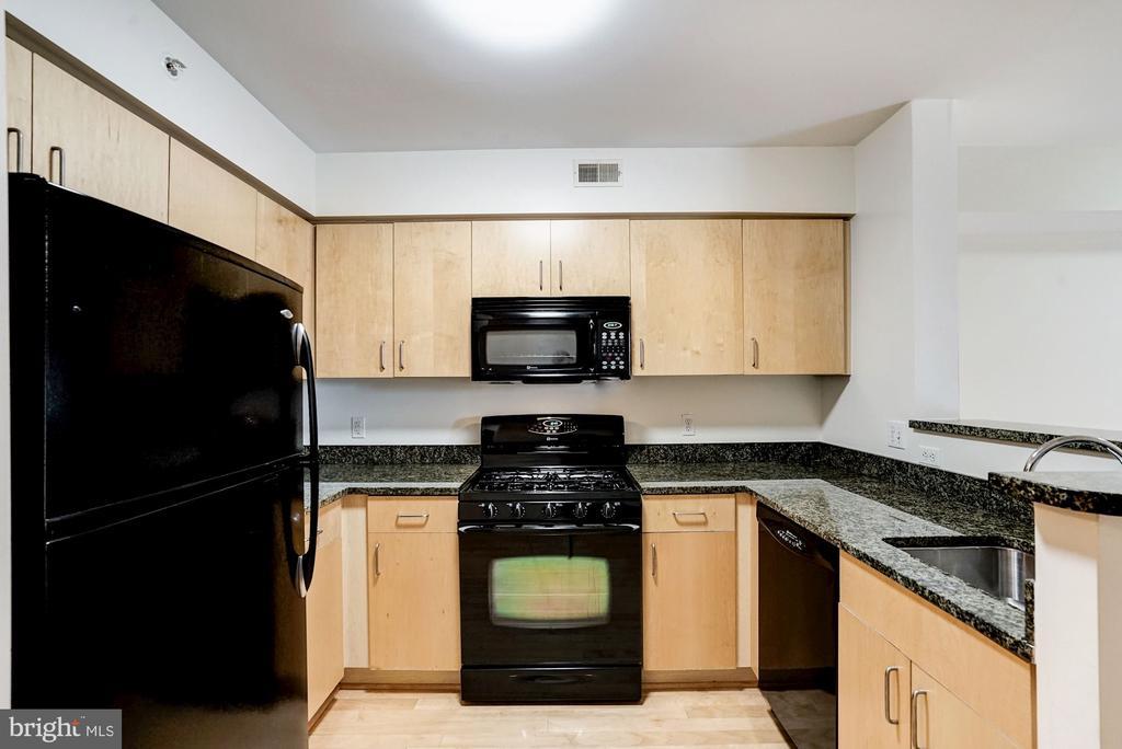 Kitchen 2 - 1000 NEW JERSEY AVE SE #413, WASHINGTON