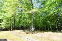 Gorgeous Wooded View - 79 MILLBROOK RD, STAFFORD