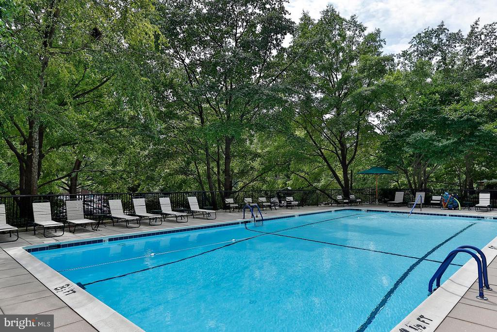 Swimming Pool - 4620 N PARK AVE #1411E, CHEVY CHASE