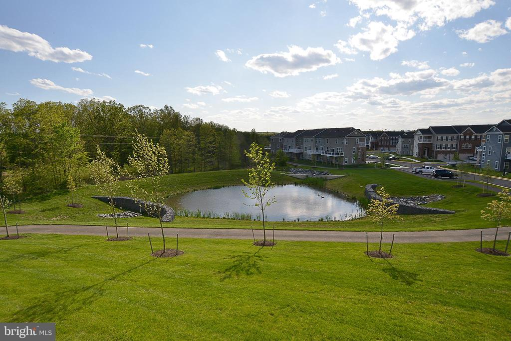 Backs to green space and pond - 22295 PINECROFT TER, ASHBURN
