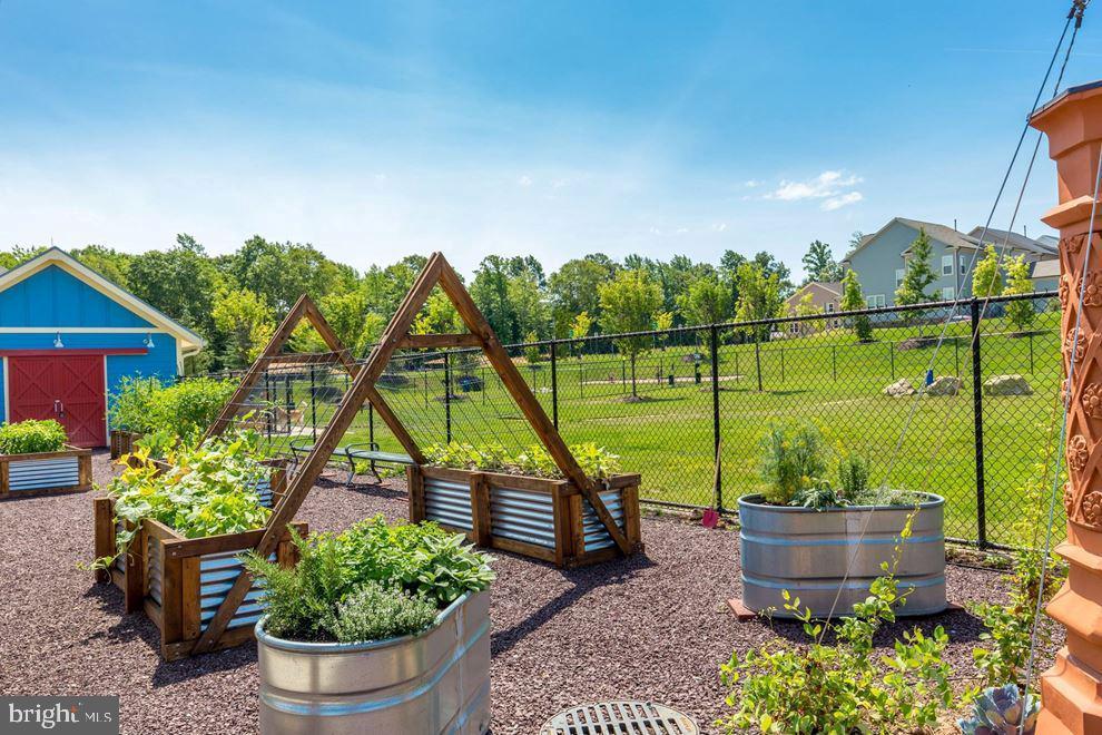 Community Garden - 450 EMBREY MILL RD, STAFFORD