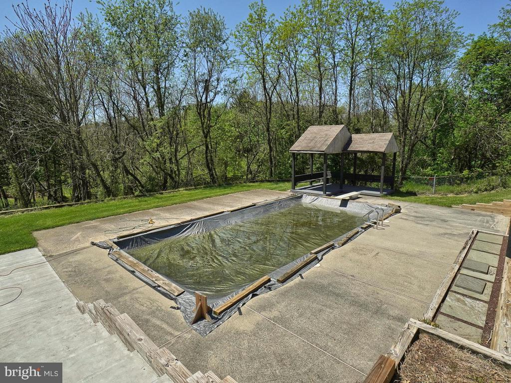 In-ground gunnite pool with diving board - 11667 FAIRMONT PL, IJAMSVILLE