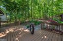 Expansive decking overlooks  its own natural oasis - 118 INDEPENDENCE ST, LOCUST GROVE