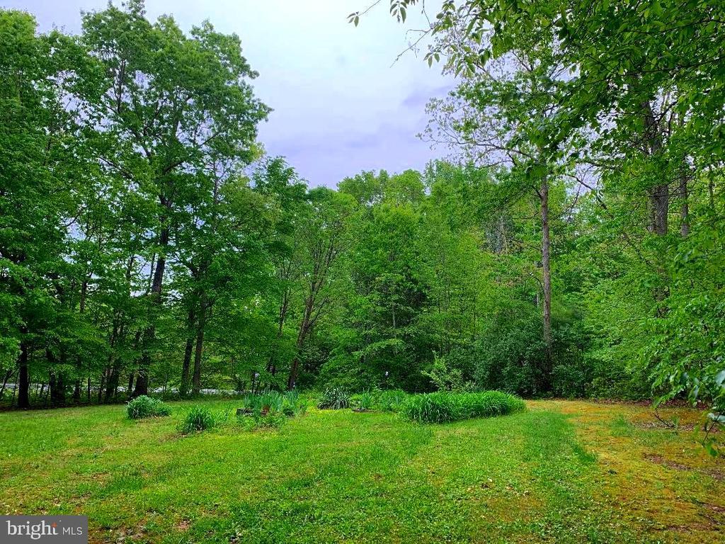 Side Yard - Flower Gardens or Plant a Garden! - 12210 GLADE DR, FREDERICKSBURG