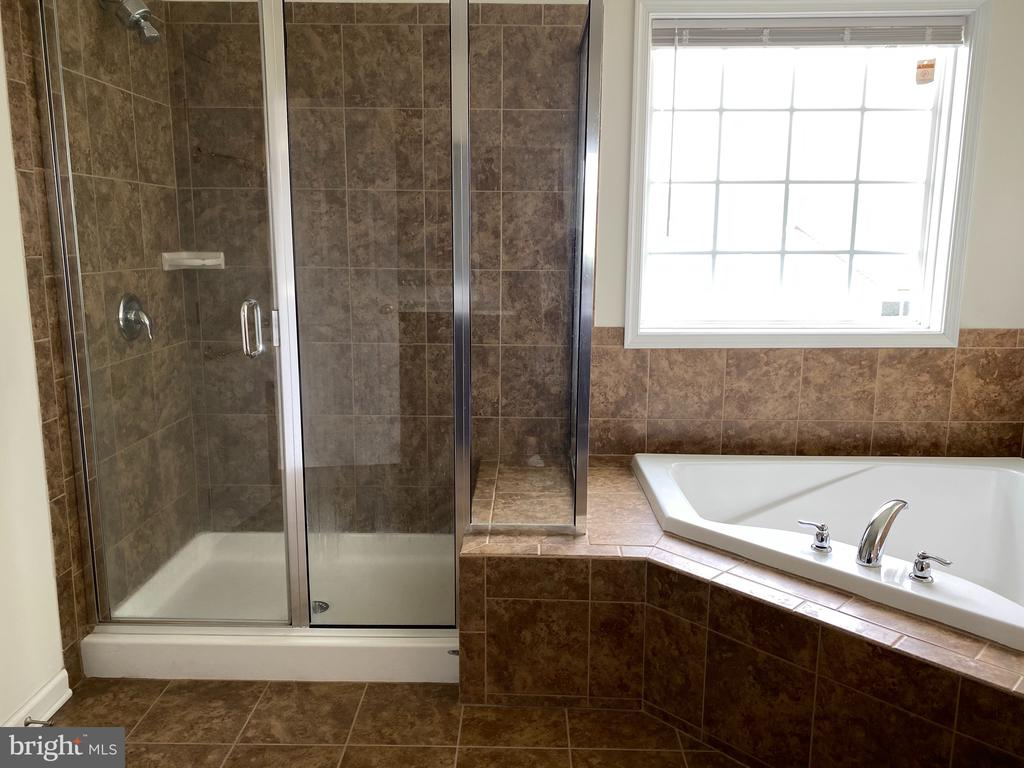 master bathroom shower and bathtub - 120 CHARISMATIC COURT, MARTINSBURG