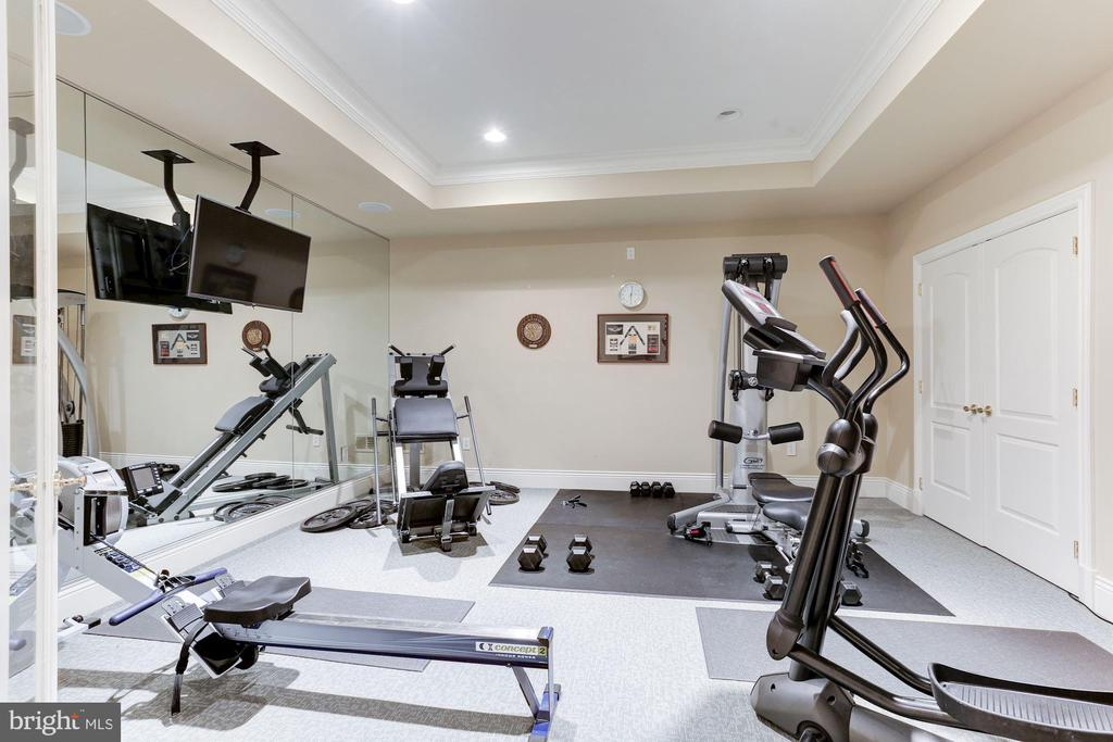 Gym - 8913 GALLANT GREEN DR, MCLEAN