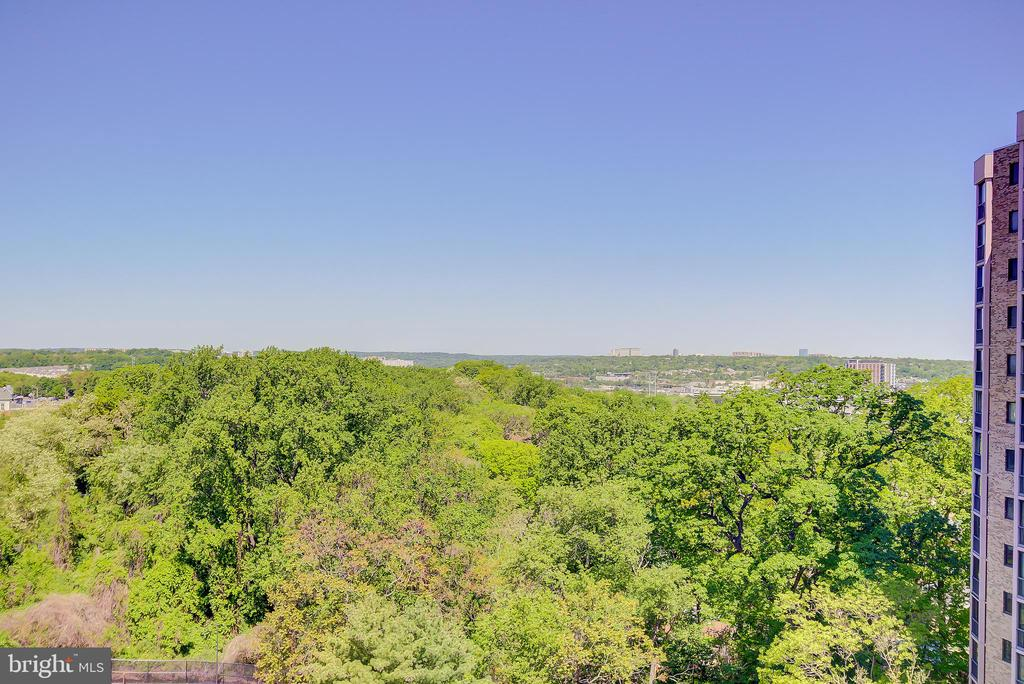 Overlooks Mount Eagle Park and Wooded Setting - 5901 MOUNT EAGLE DR #1115, ALEXANDRIA