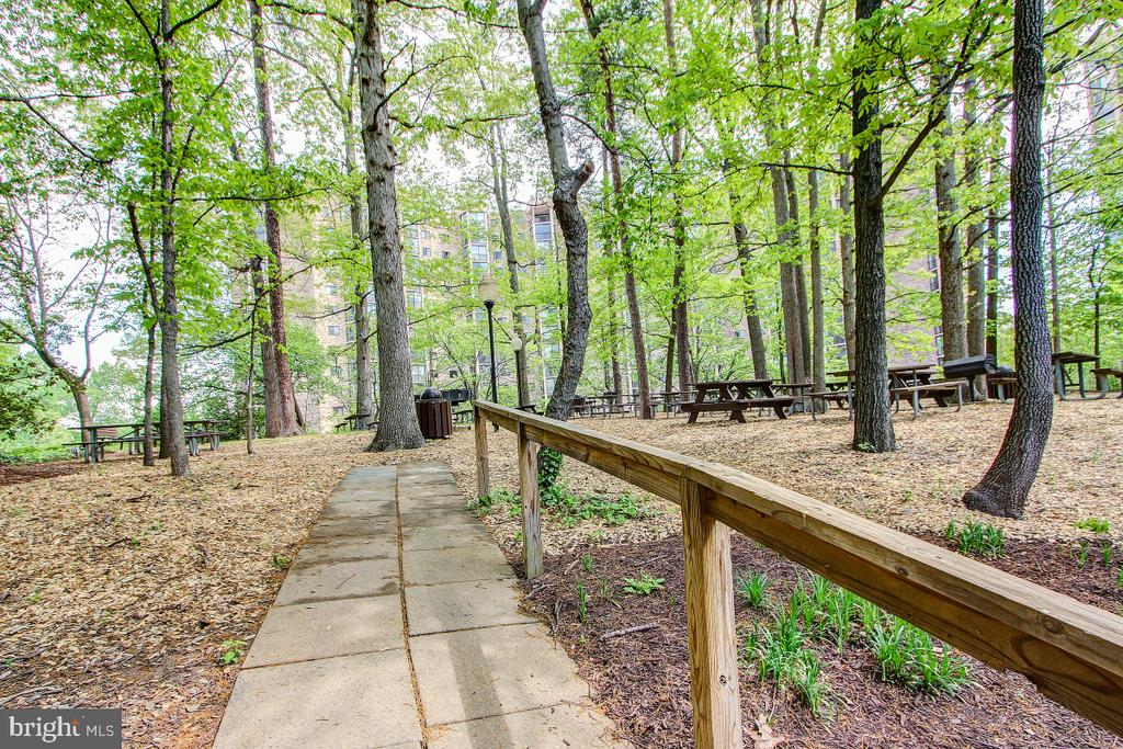 Walking and Nature Trails and Picnic Areas! - 5901 MOUNT EAGLE DR #1115, ALEXANDRIA