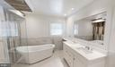 Master Bath Spa with Quartz Vanity - 20284 BROAD RUN DR, STERLING