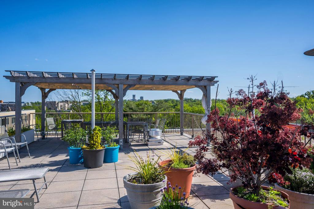 Rooftop Terrace - 4600 CONNECTICUT AVE NW #110, WASHINGTON
