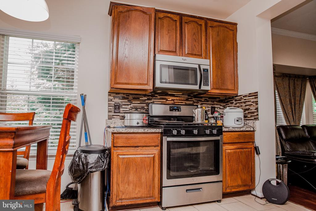 Kitchen - 43074 SHERBROOKE TER, LEESBURG