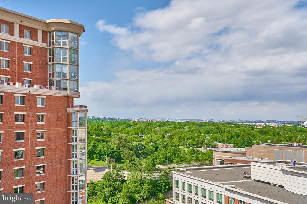 View From Roof Top Terrace - 2050 JAMIESON AVE #1103, ALEXANDRIA