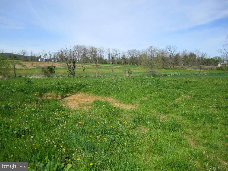 土地 為 出售 在 Newmanstown, 賓夕法尼亞州 17073 美國
