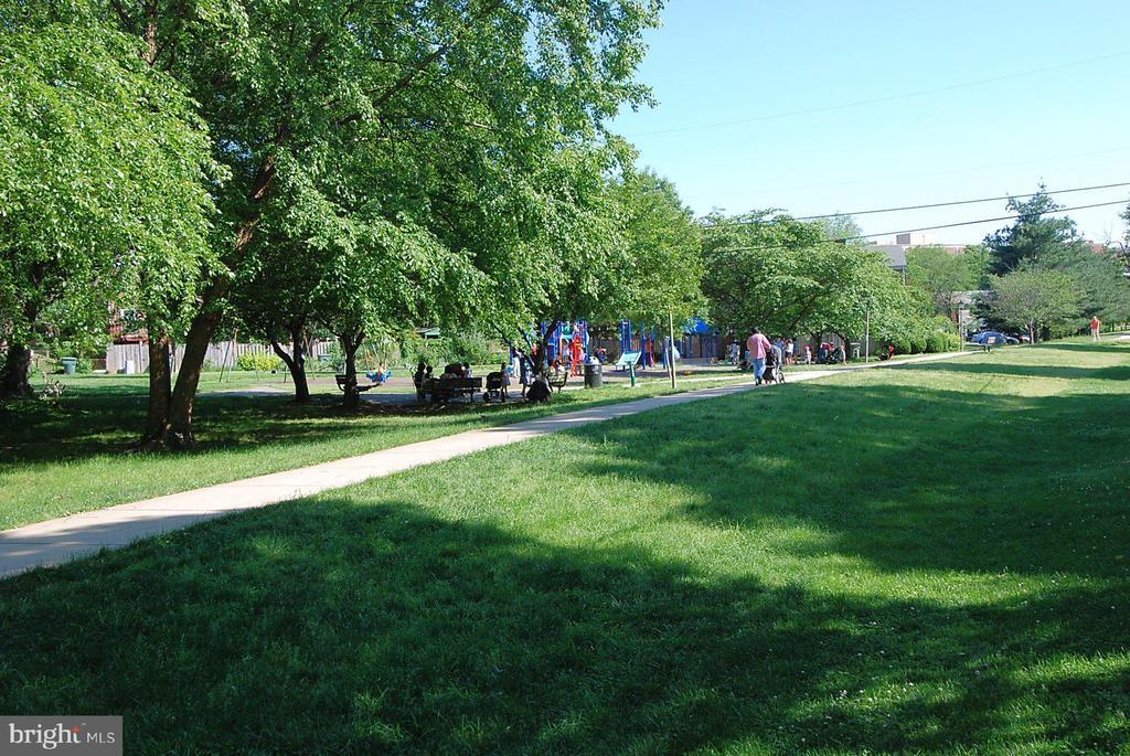 Local Park/Playground - 4810 PEACOCK AVE, ALEXANDRIA