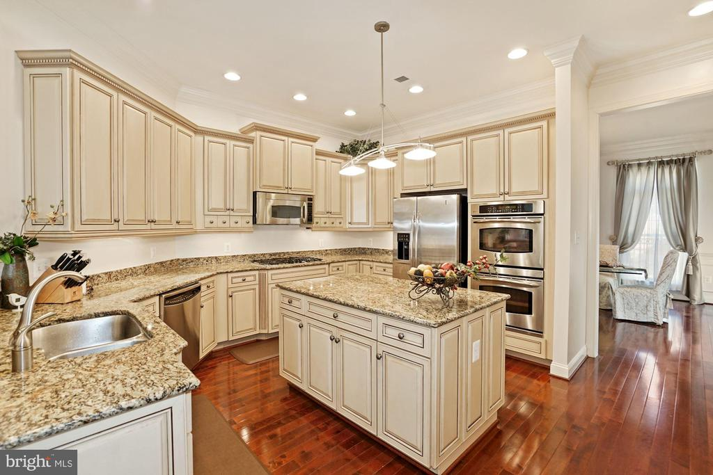 Premium Granite Countertop with double door pantry - 2976 TROUSSEAU LN, OAKTON