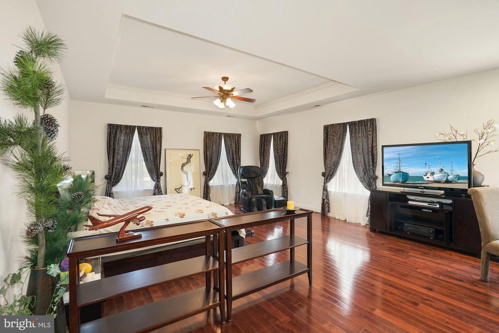 Expansive Master Bedroom Suite - 2976 TROUSSEAU LN, OAKTON