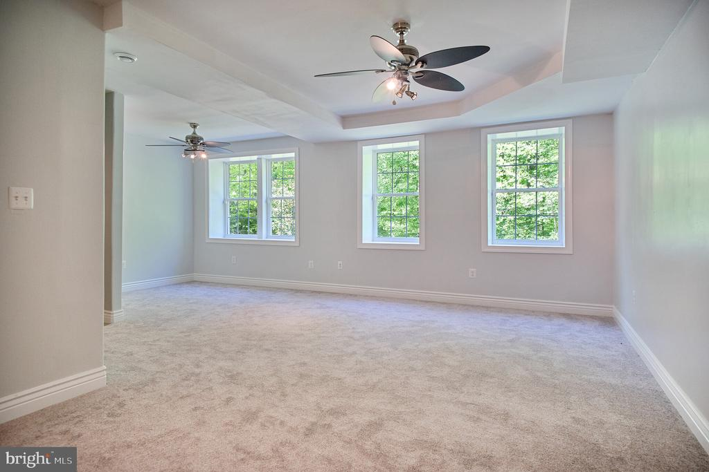 Basement room with built-in appliance ready outlet - 152 OLD CROPPS MILL RD, FREDERICKSBURG