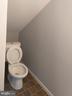 Toilet - 207 54TH ST NE, WASHINGTON