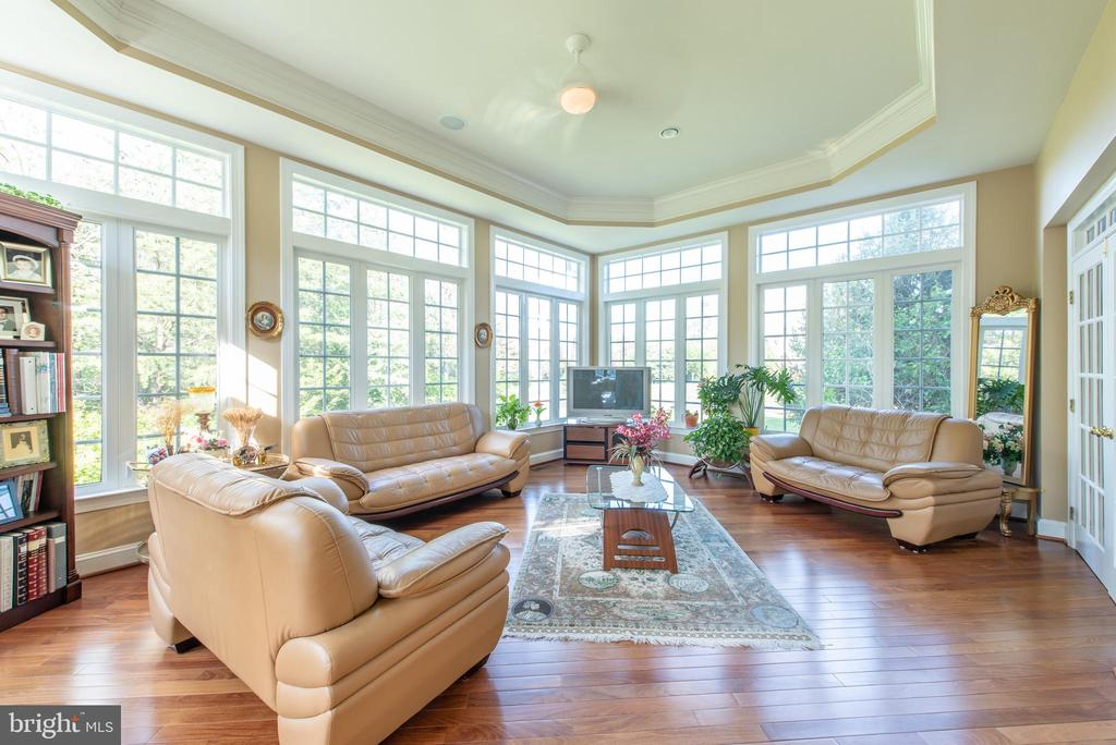 These windows are to die for - 27531 PADDOCK TRAIL PL, CHANTILLY