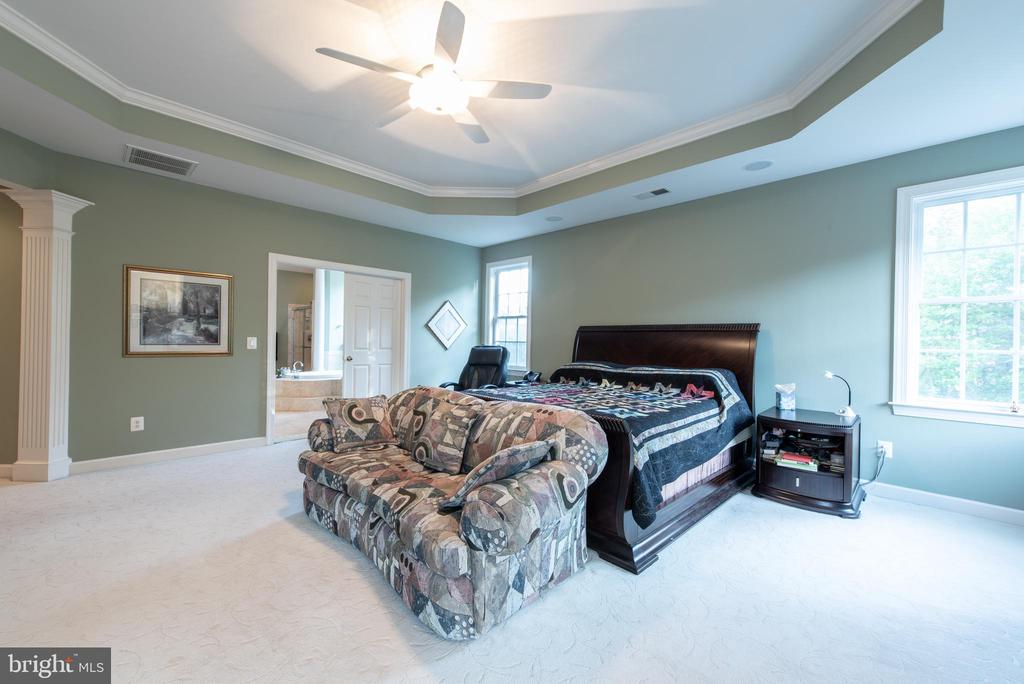 Very Very Very BIG Master bedroom - 27531 PADDOCK TRAIL PL, CHANTILLY