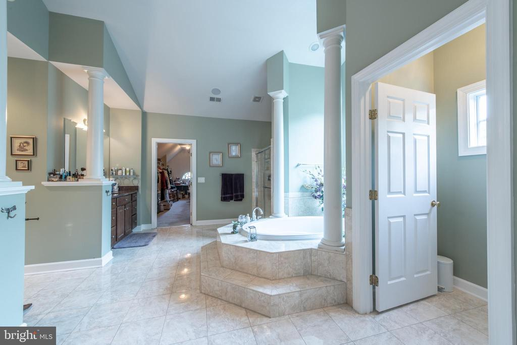 exquisite master bathroom - 27531 PADDOCK TRAIL PL, CHANTILLY